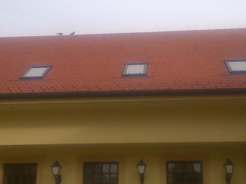 Magastető tetőfedő munkák Héliker Invest Zrt.